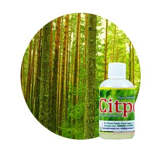 Lemongrass oil manufactures